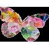 Butterfly - Ilustracje -