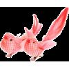 Decoration - Objectos -
