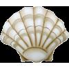 Shell - Articoli -