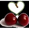 Cherry - 水果 -
