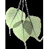 lišće - Plants -