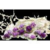 ružice - Piante -