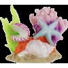 Ocean Shell - Items -