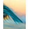 Ocean Transparency - Natura -