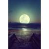Ocean - 自然 -