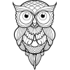 Owl illustration - Illustrations -