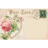 POST CARD - Items -