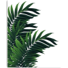 Palm Leaves Tropical - 植物 -