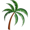 Palm Tree - Uncategorized -