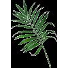 Palma - Rastline -