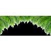 Palm leaf (asia12) - Растения -