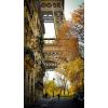 Paris autumn photo - Uncategorized -