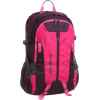 Patagonia Refugio Pack Flash Pink - Plecaki - $51.75  ~ 44.45€