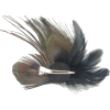 Peacock Feather Hair Clip - Other jewelry -