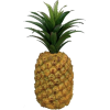 Pineapple - 水果 -