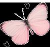 Pink Butterfly - Ilustrationen -