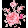 Pink Flowers - Natureza -