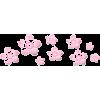 Pink Flowers - 植物 -