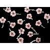 Pink Flowers - Biljke -