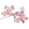 Pink Leaves - Uncategorized -