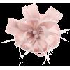 Pink fascinator - Hat -