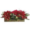 Poinsettia - Plants -