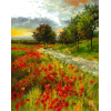 Poppy Field - Nature -