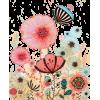 Poppy - Biljke -