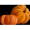 Pumpkin - Vegetales -