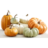 Pumpkins - Items -