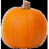 Pumpkins - Nature -