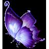 PurpleButterfly2 - Uncategorized -
