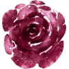 Purple Floral Decal - Nature -
