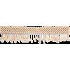 ROSANTICA Idra gold-tone, bead and shell - Belt -