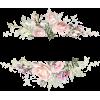 Rose Monogram - Rośliny -