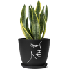 Rose Quartz Collection plantpot - Plants -