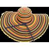 San Diego Hat - 有边帽 -
