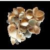 Sea Shells Beige - Przedmioty -