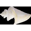 Shell - Przedmioty -
