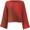Slate & Willow Red Colorblock Sweater - Puloveri -