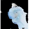 blue - 插图 -