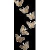 butterflies - Animals -