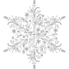 Snow flake - Illustrazioni -