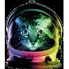 Space cat - Animales -