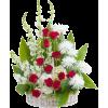 Spring Flowers - Rośliny -