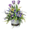 Spring Flowers - Plants -