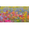Spring - Predmeti -