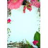 Spring border - Background -