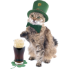 St. Patrick's Day Is The Worst - Animales -