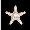 Star White - Animals -